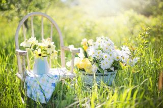 garden waste removal importance